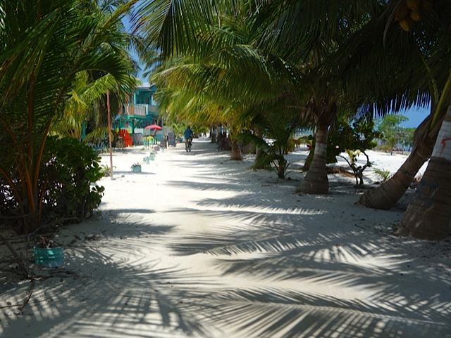 The beachfront path in from Shirley's