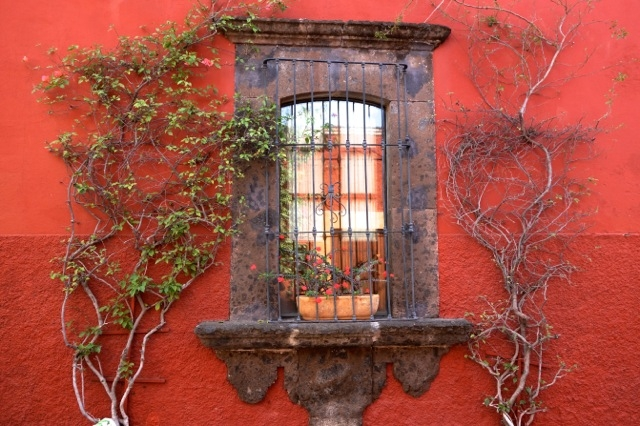 The Doors and Windows of San Miguel