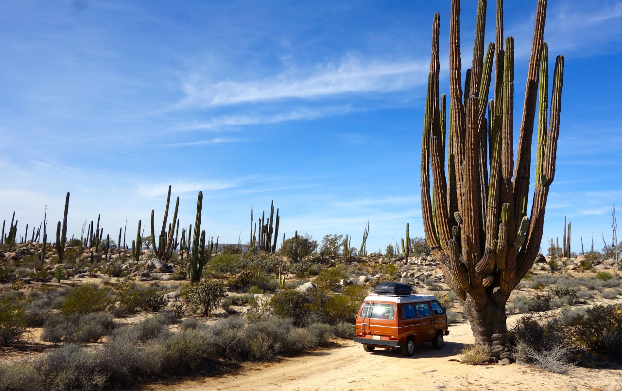 He and crossing the desert of Baja, Mexico