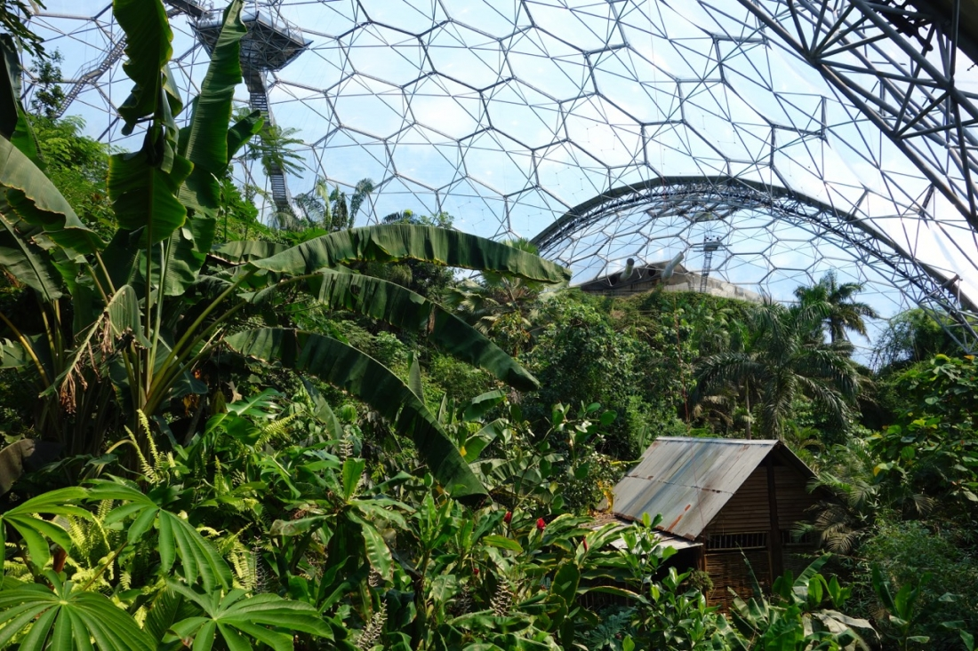 Eden Project, Cornwall, England_2