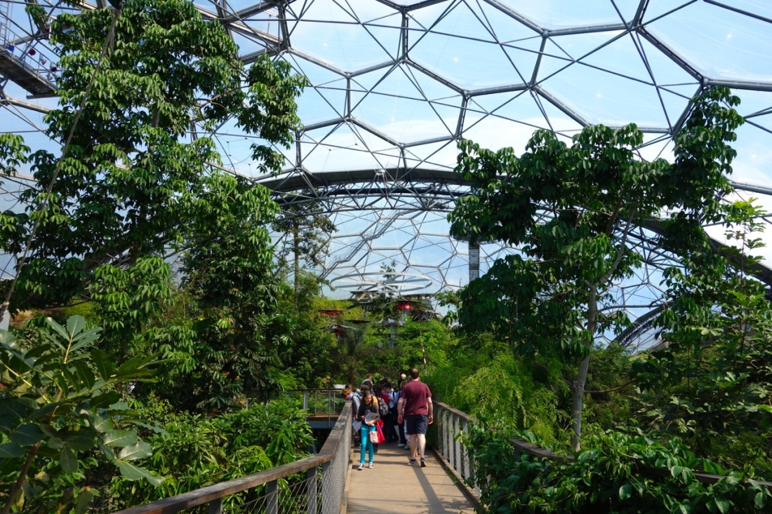 Eden Project, Cornwall, England_3