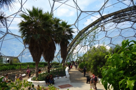 Eden Project, Cornwall, England_4