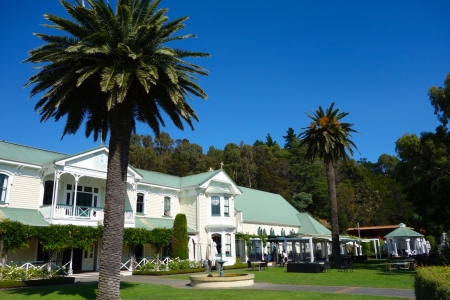 Mission Estate Vineyard, N Havelock, Hawkes Bay, NZ