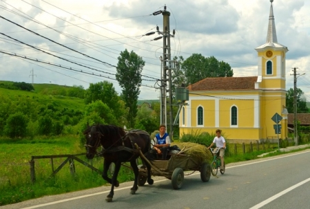 At a fast trot, Maramures, Romania